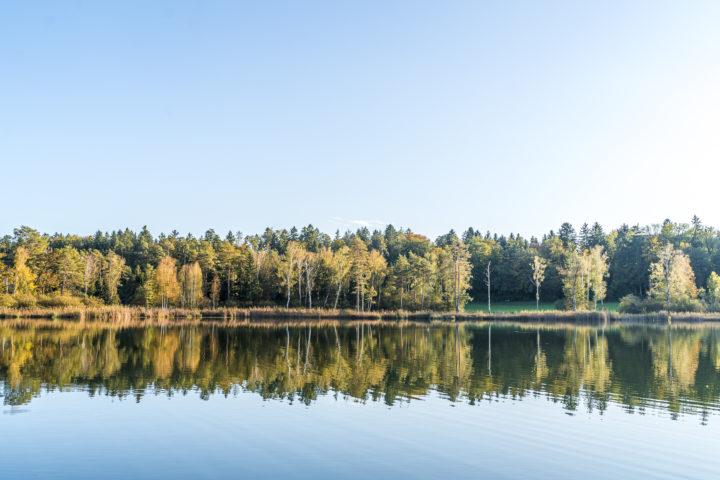 9 Ausflugsziele rund um Zürich – Grüne Oasen für Naturfreunde