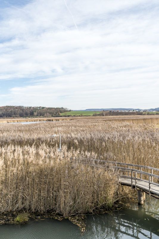 Neeracherried BirdLife Naturzentrum