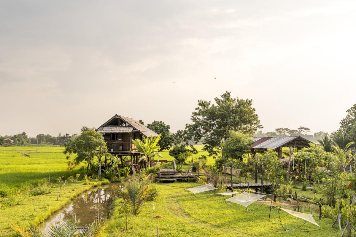 Ban Luang Nuea Community