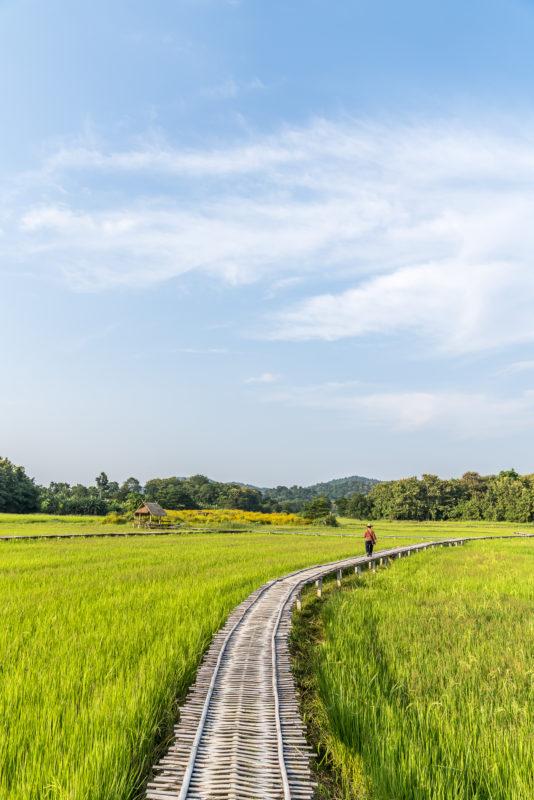 Ban Na Ton Chan Community