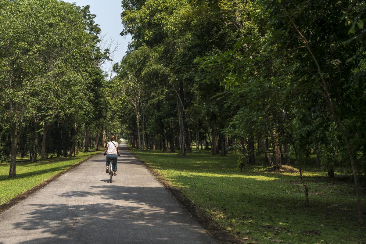 Velotour Sri Satchanalai Historic Park