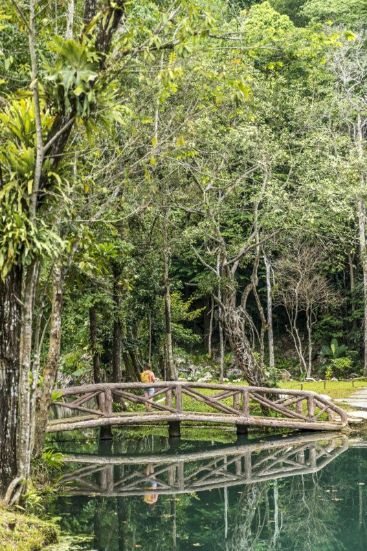 Tham Luang Khun Nam Nang Non Firest Park Nordthailand