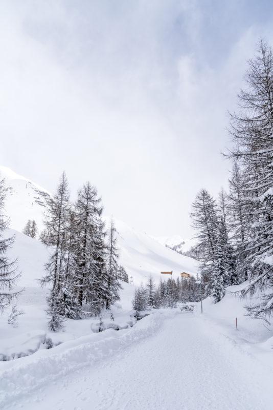 Samnaun Winterwanderwege