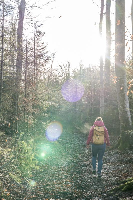 Wandern Worberberg