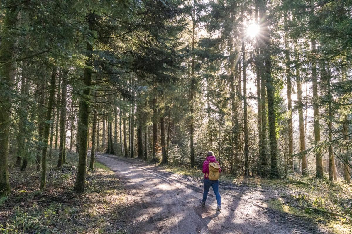 Worb-Walkringen Wanderweg