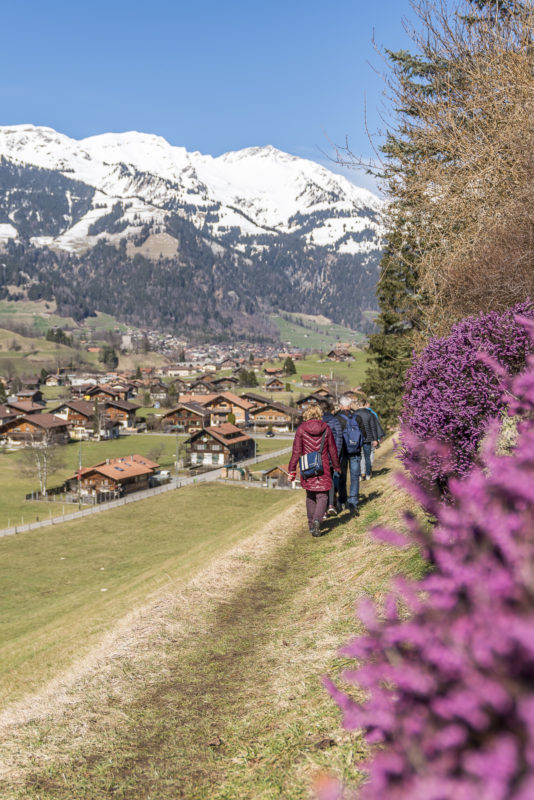 Familienwanderung im Berner Oberland