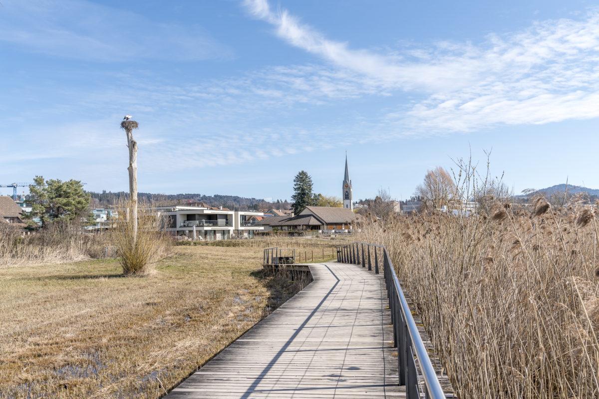 Pfäffikon Naturschutzgebiet