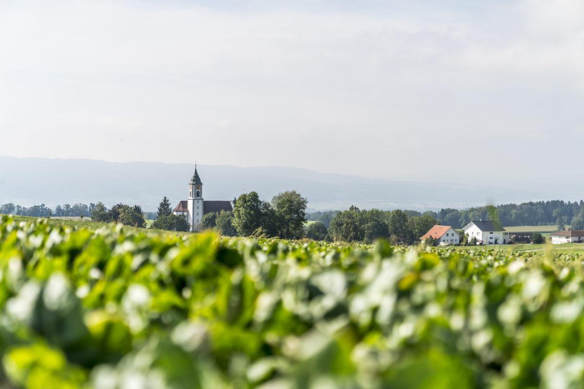 Thurgau Landschaft
