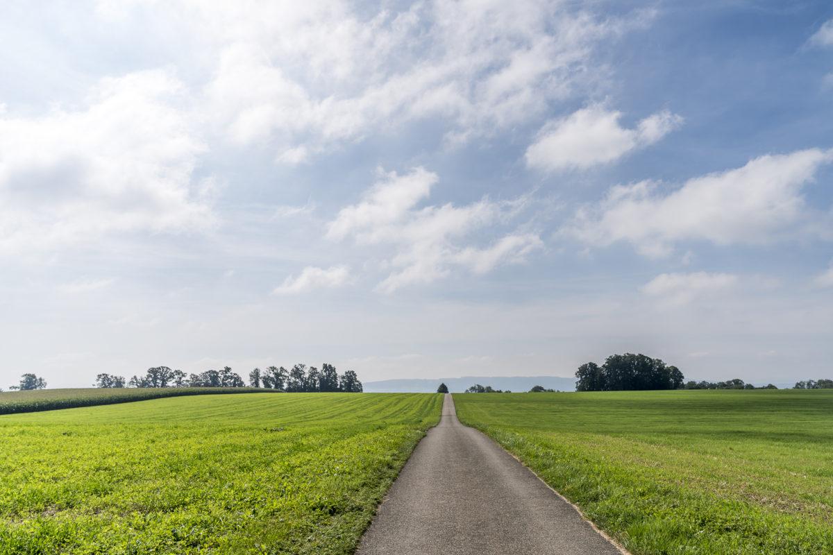 Thurgauer Seeruecken Wanderung