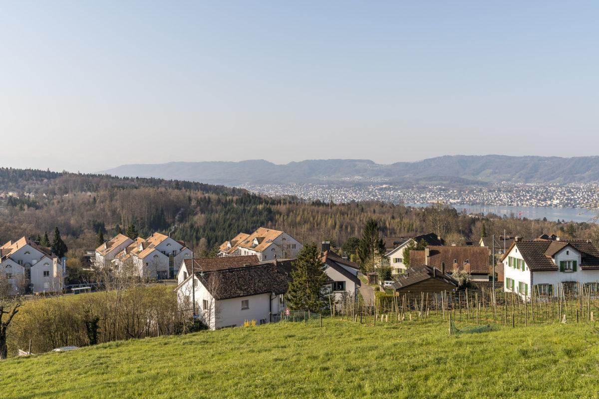 Aussicht Zürich Witikon