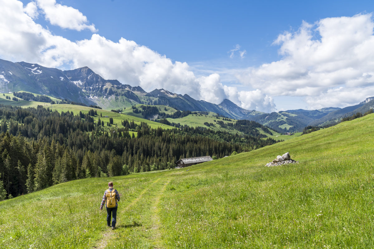 Abstieg Schibengtüsch - Salwideli