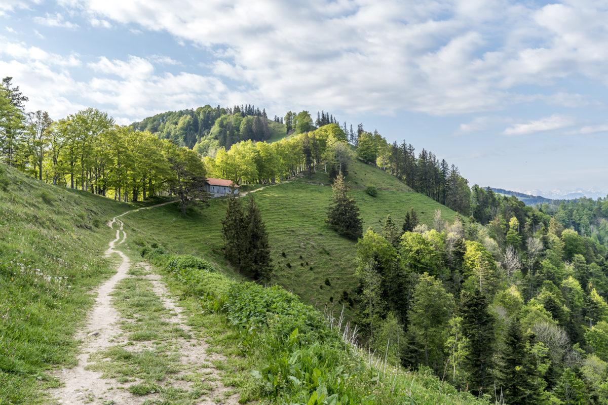 Aufstieg Schnebelhorn