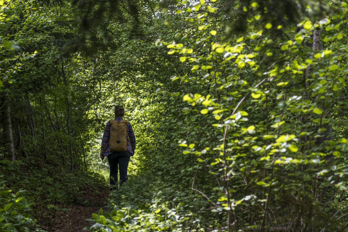 Degersheim Wandern