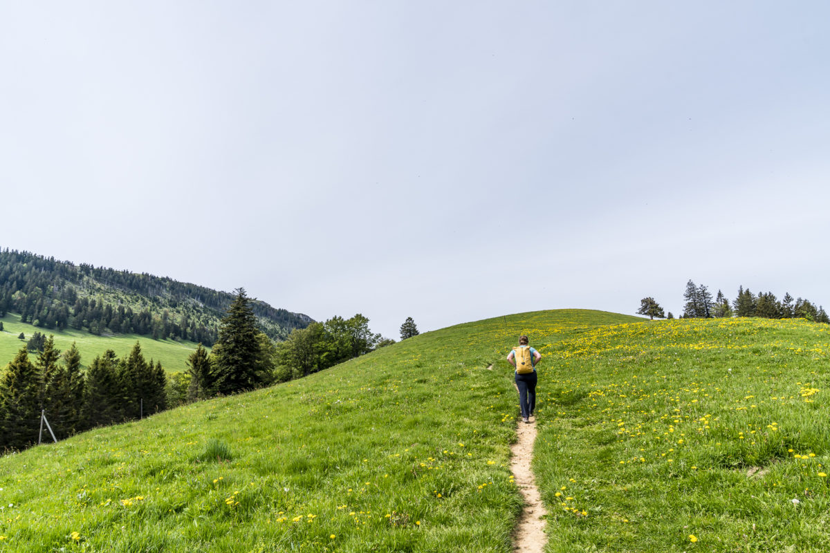 Jura-Höhenweg Aufstieg Le Suchet