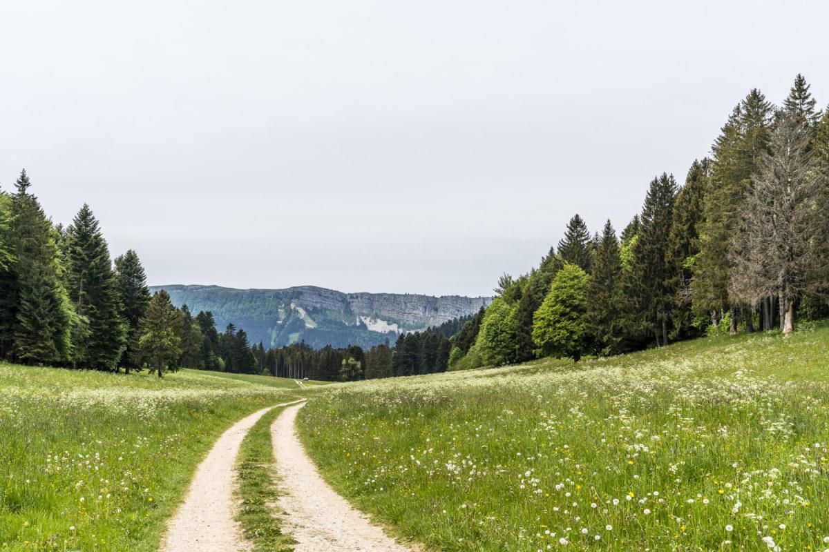 Jura-Höhenweg Fernwanderung