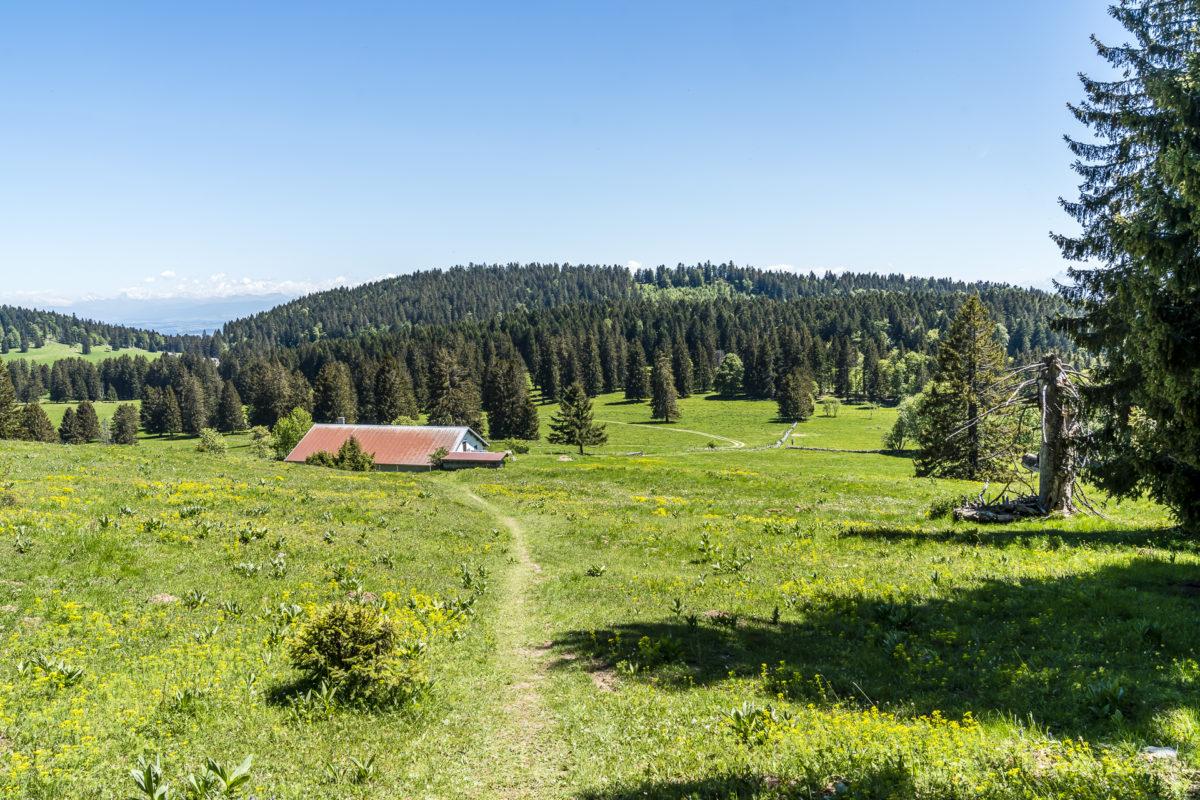 Landschaft Waadt Jura