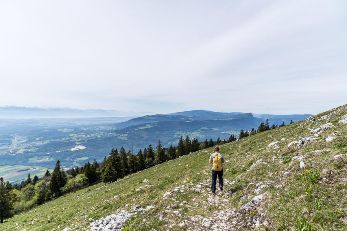 Le Suchet Vallorbe Höhenweg