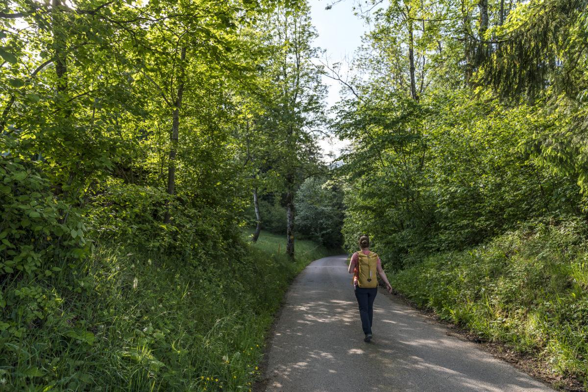 Neckertaler Höhenweg Mogelsberg