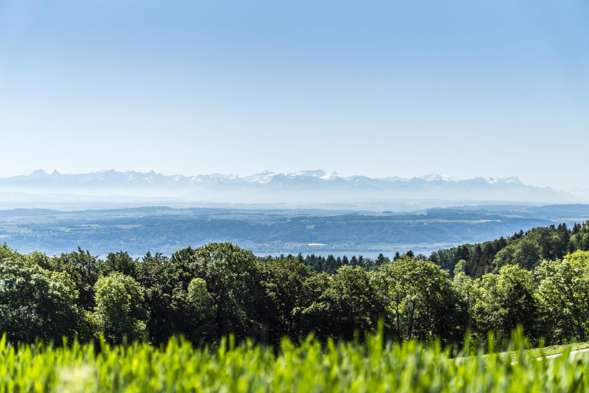 Provence Aussicht