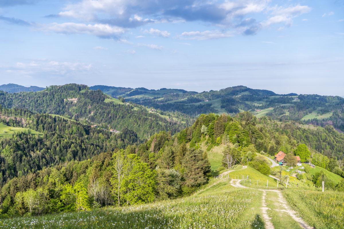 Steg - Schnebelhorn Wanderung