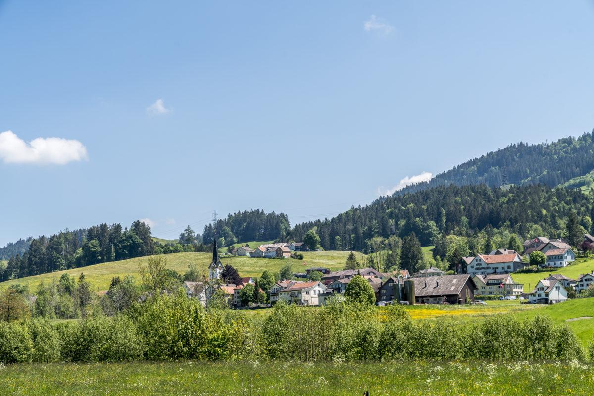Wald Schönengrund Toggenburg