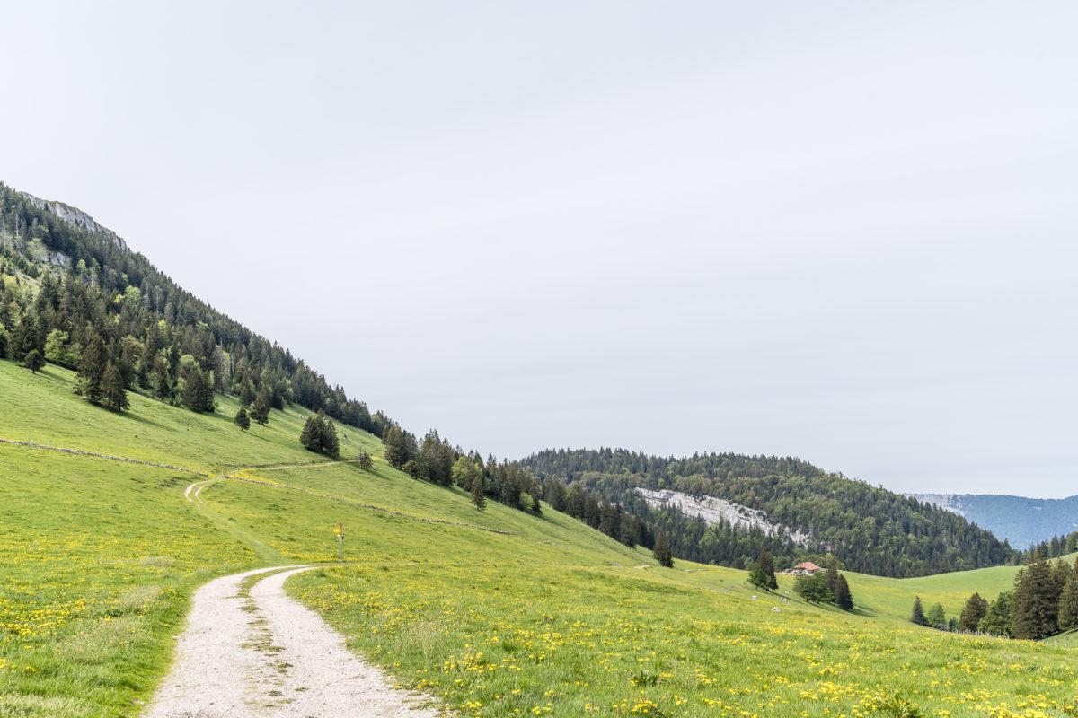 Wanderwege im Jura