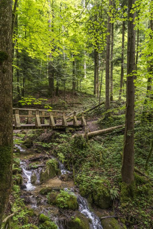 Wanderung Wissbachschlucht