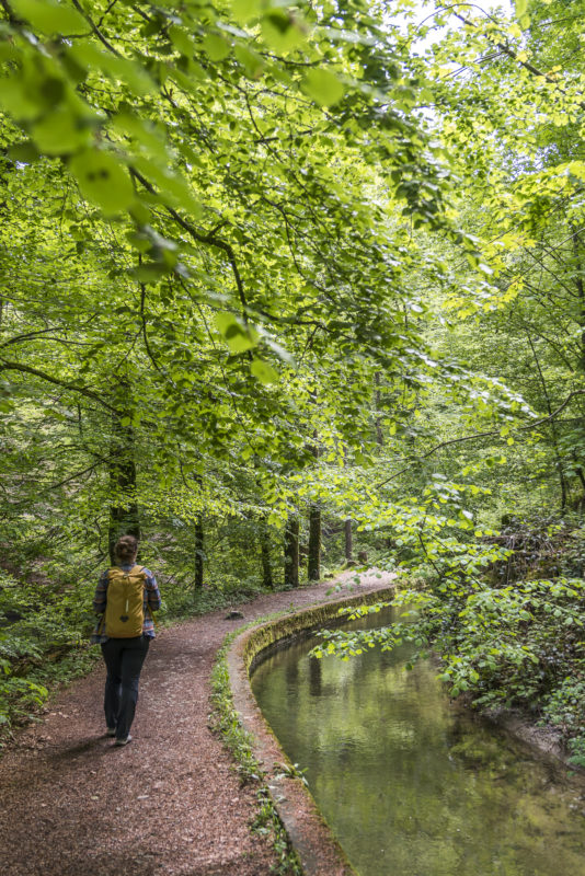 Wanderung Wissbachschlucht Degersheim