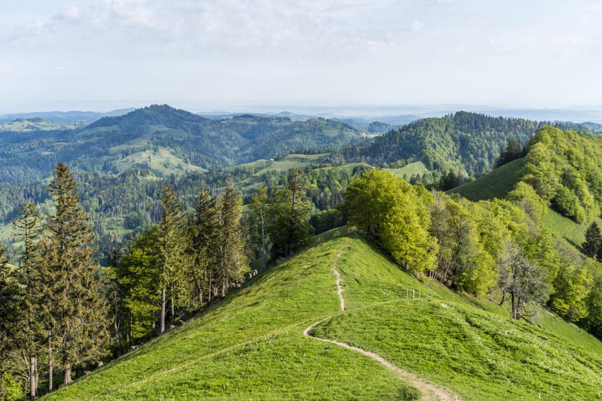 Weg zum Schnebelhorn