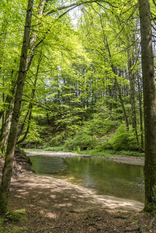 Wissbach Fluss