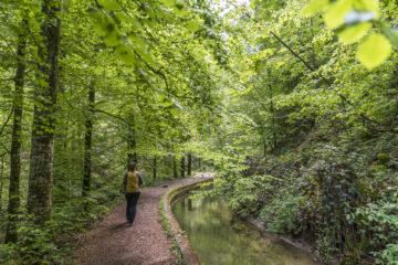 Familientaugliche Tobelwanderung: durch die Wissbachschlucht nach Degersheim