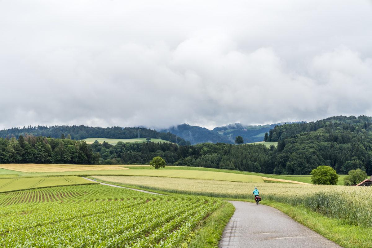 Laupen - Thun Herzroute