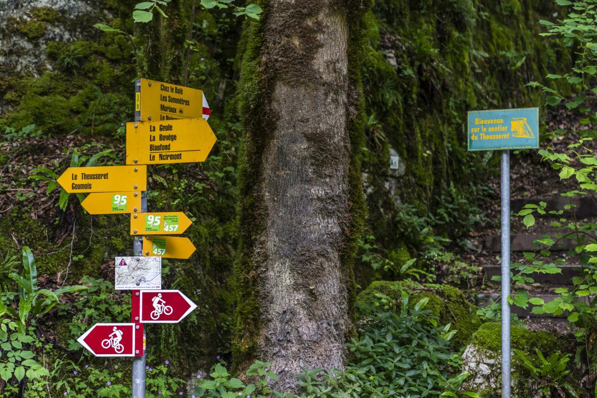 Bergweg Sommetre Jura