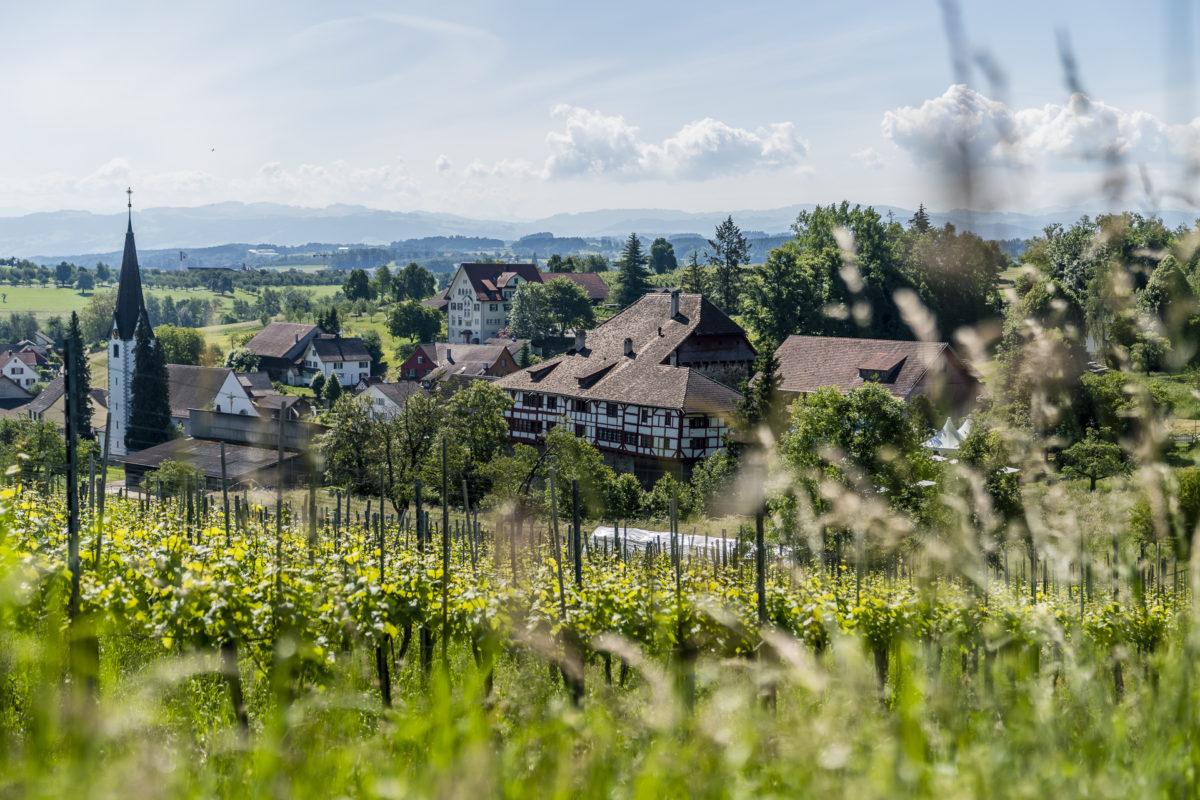 Hagenwil Thurgau