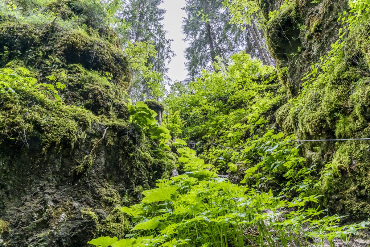 Jura Höhlen Monlési