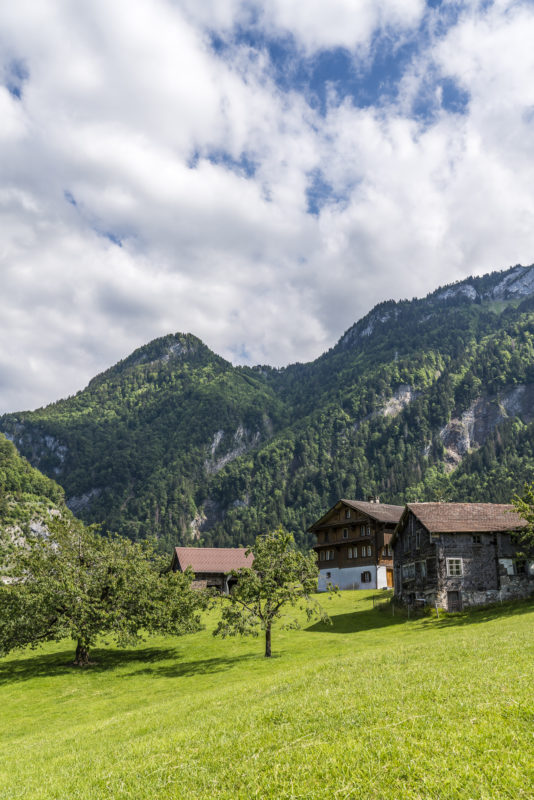 Muotathal Alp