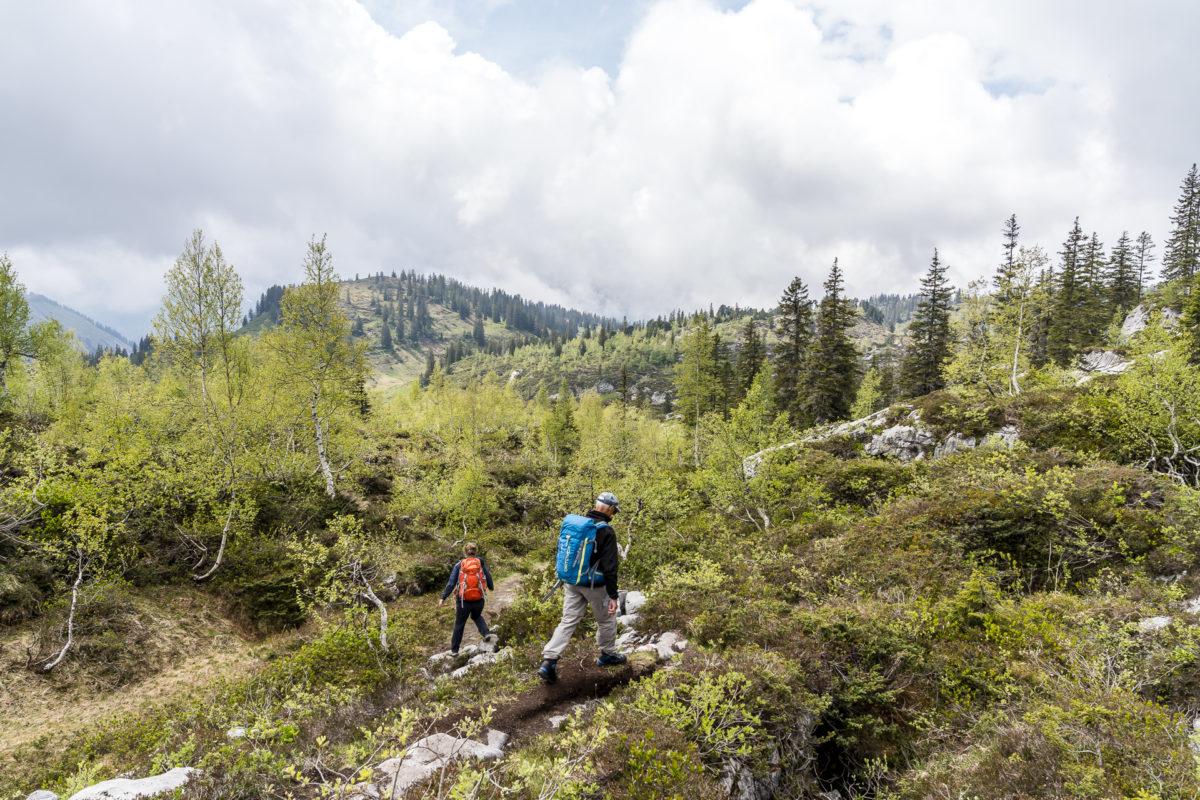 Urwaldreservat Bödmeren Muotathal Schwyz