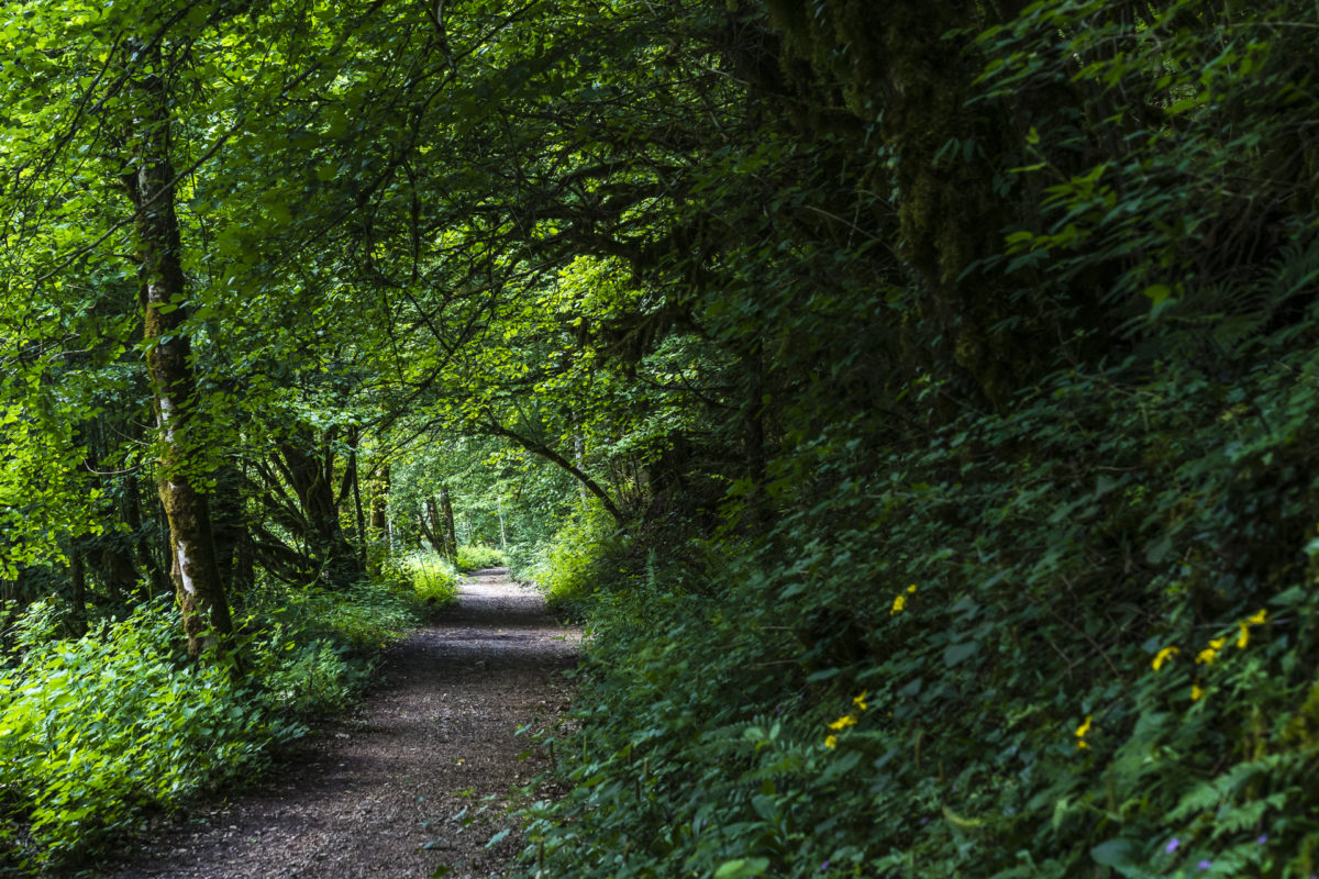 Wanderweg Doubs