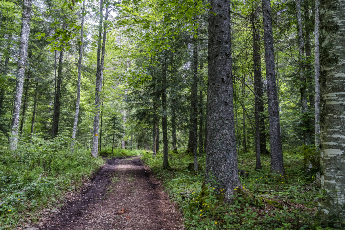 Wanderwege Val-de-Travers