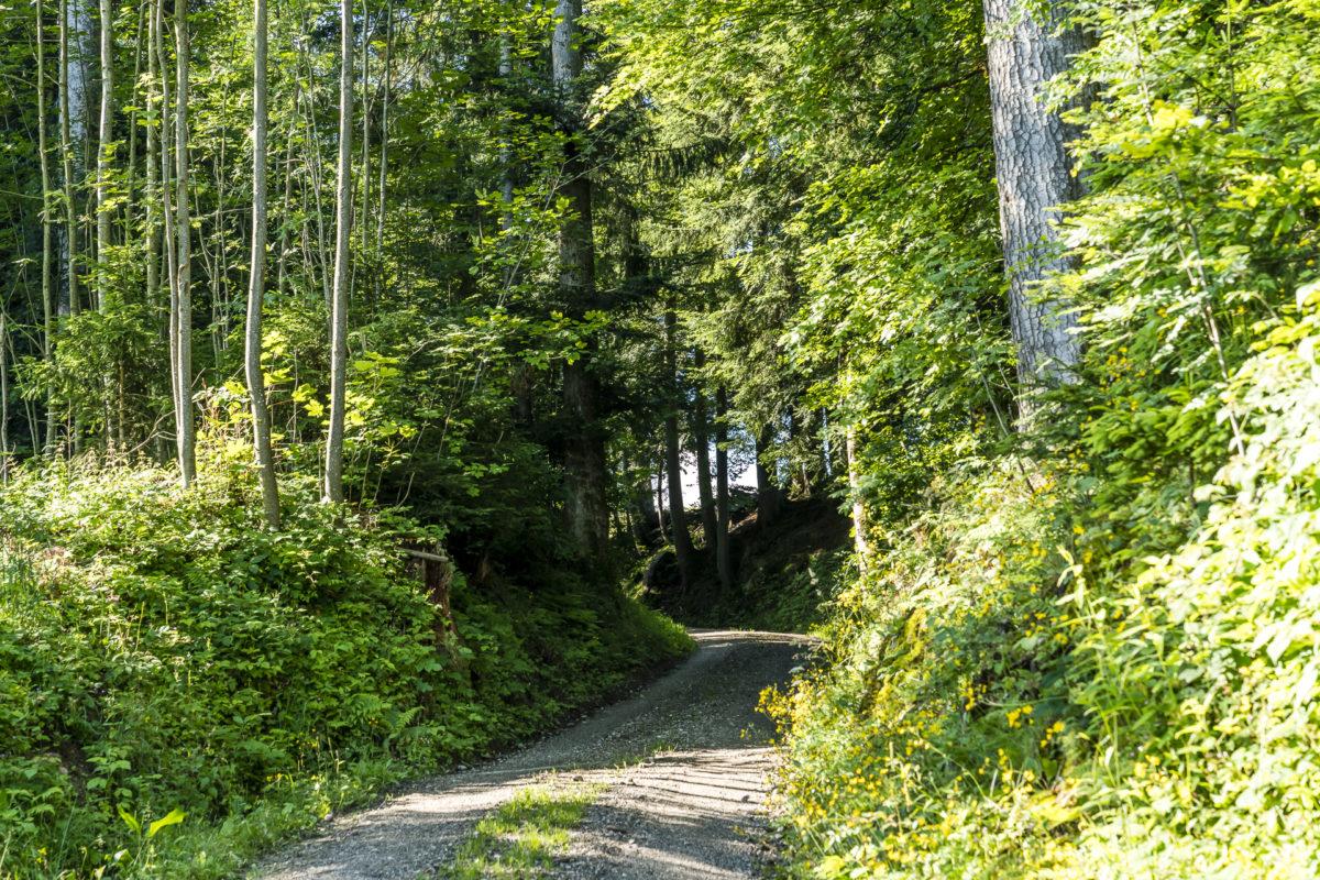 Wanderweg Signau Chuderhüsi Emmental