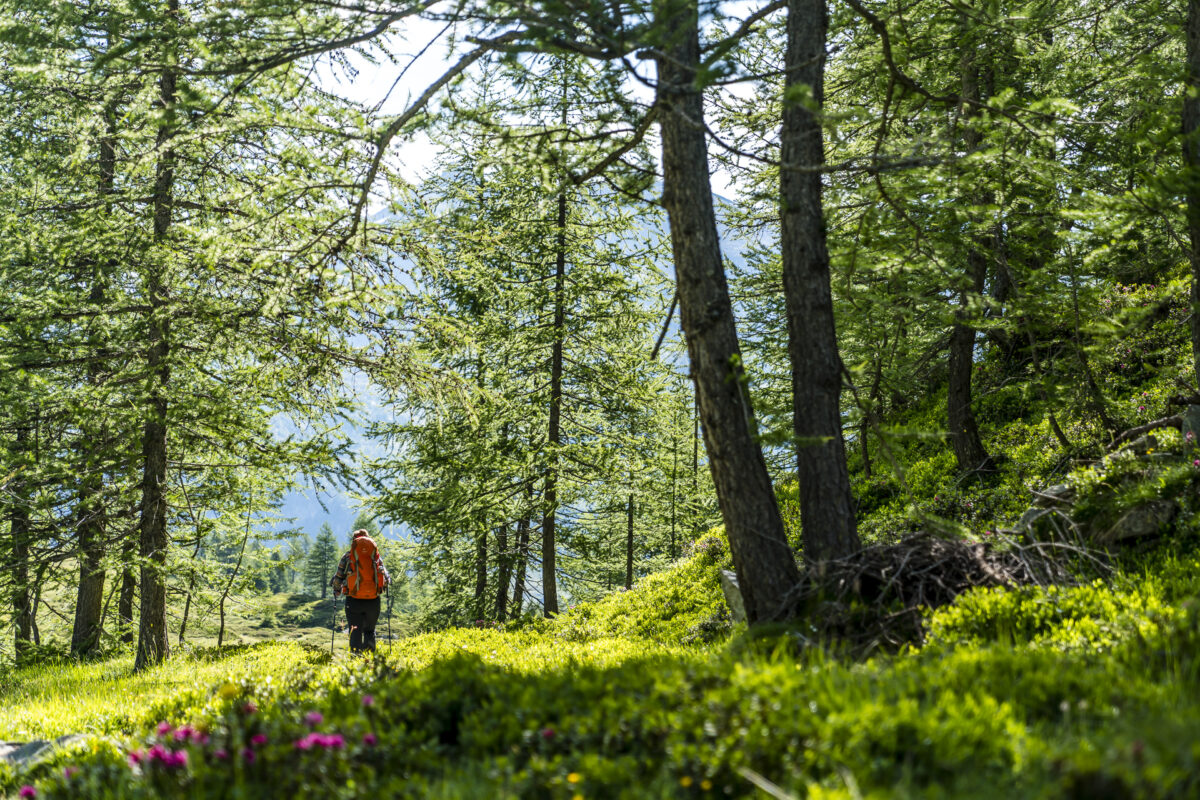 Bergwelt Aostatal