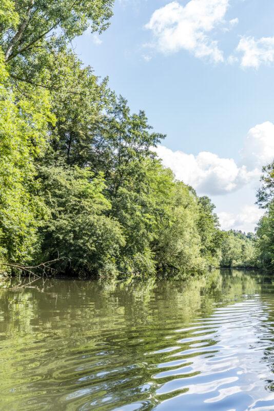 Enz naturnaher Fluss