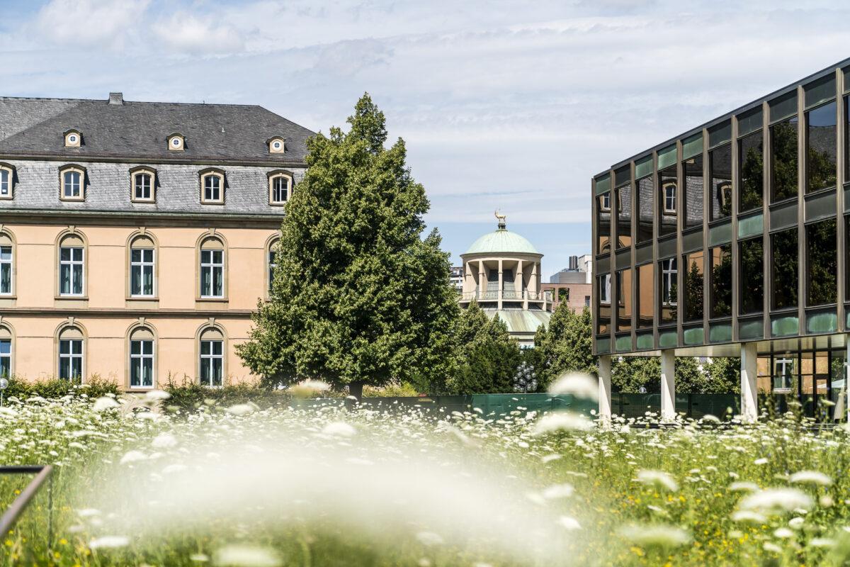 Oberer Schlossgarten Stuttgart
