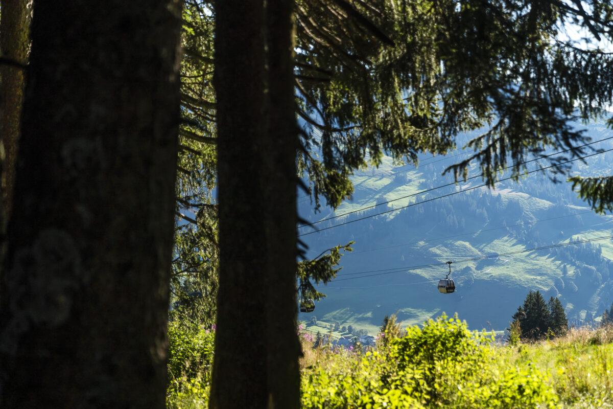 Wanderung Sörenberg Kemmeriboden-Bad