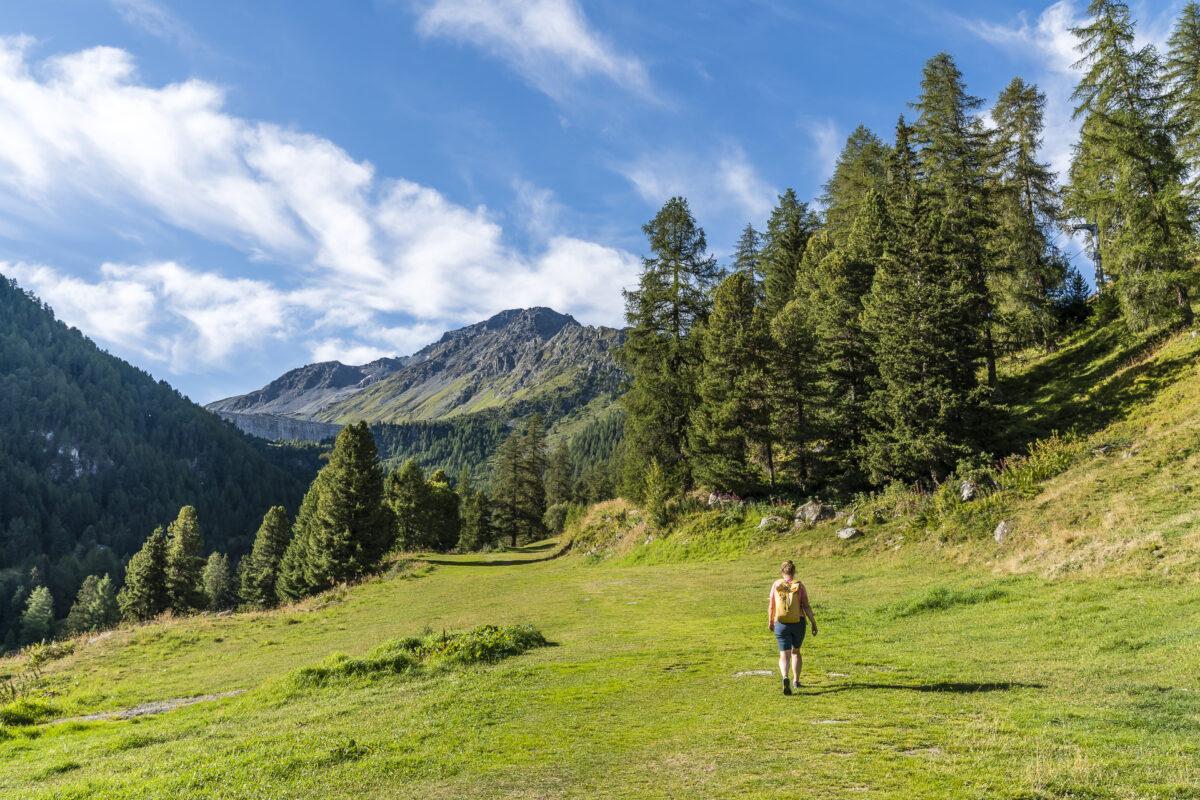 Siviez - Nendaz Wanderung