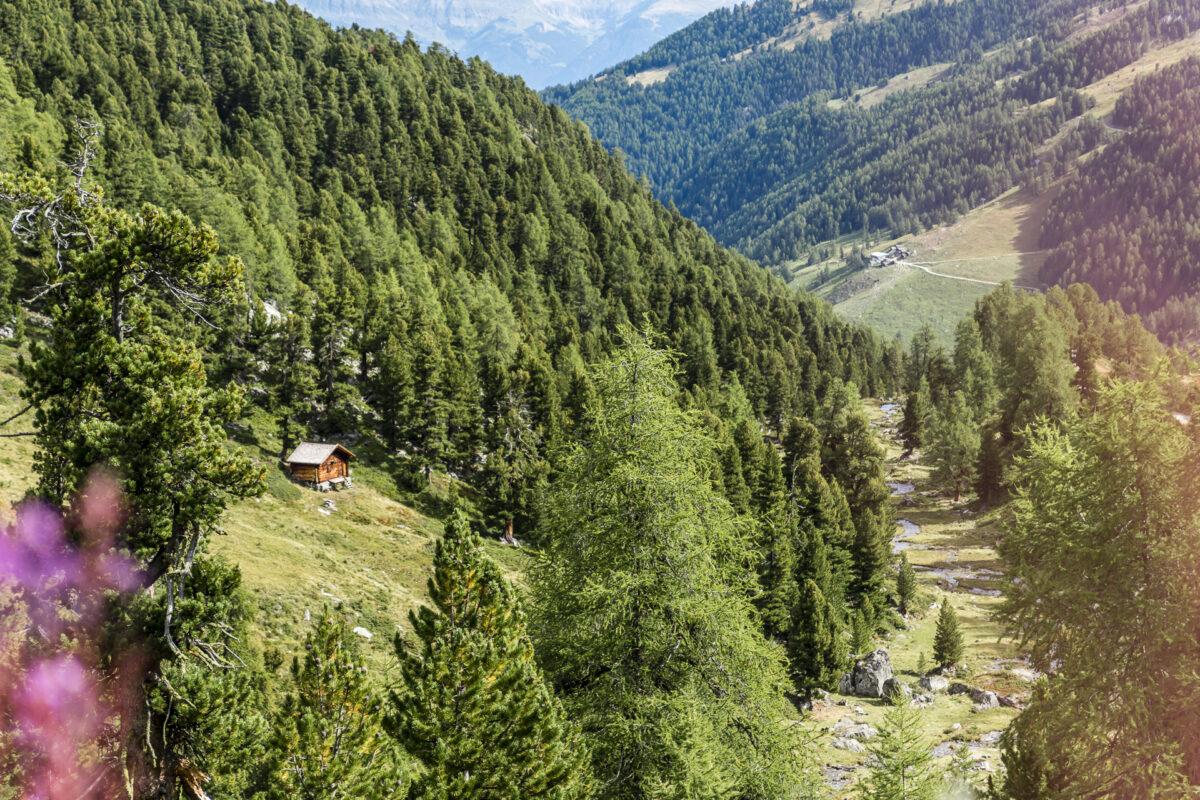 Alp Tortin Nendaz