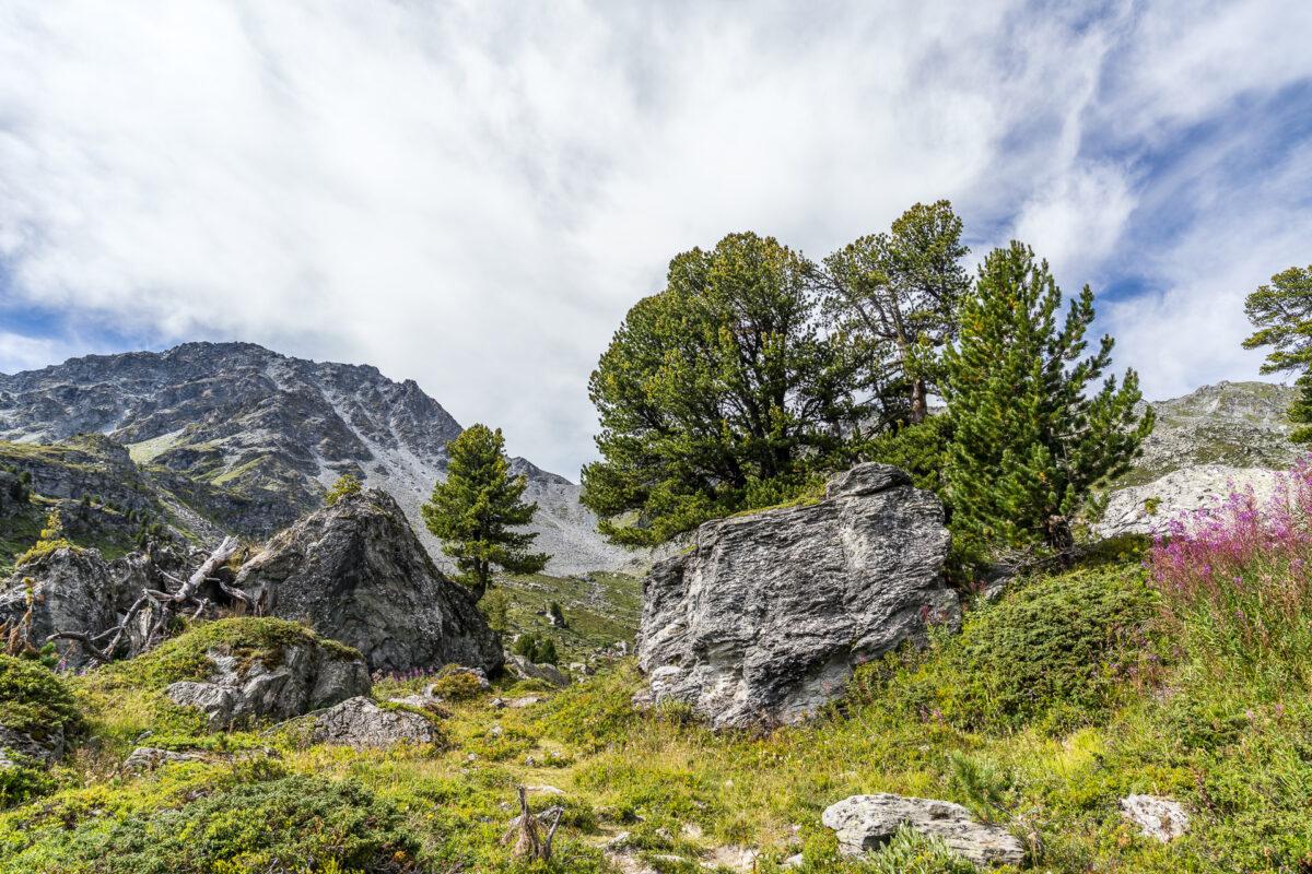 Landschaft Nendaz