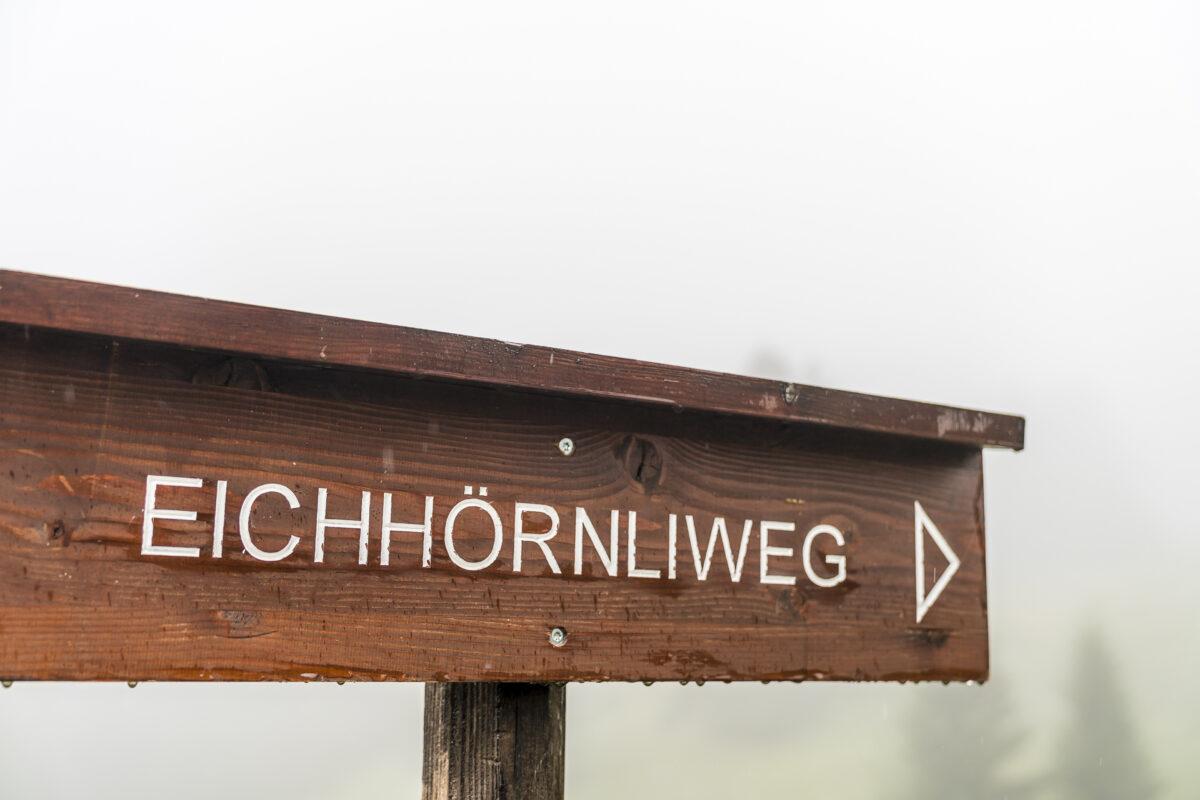 Eichhörnliweg Arosa