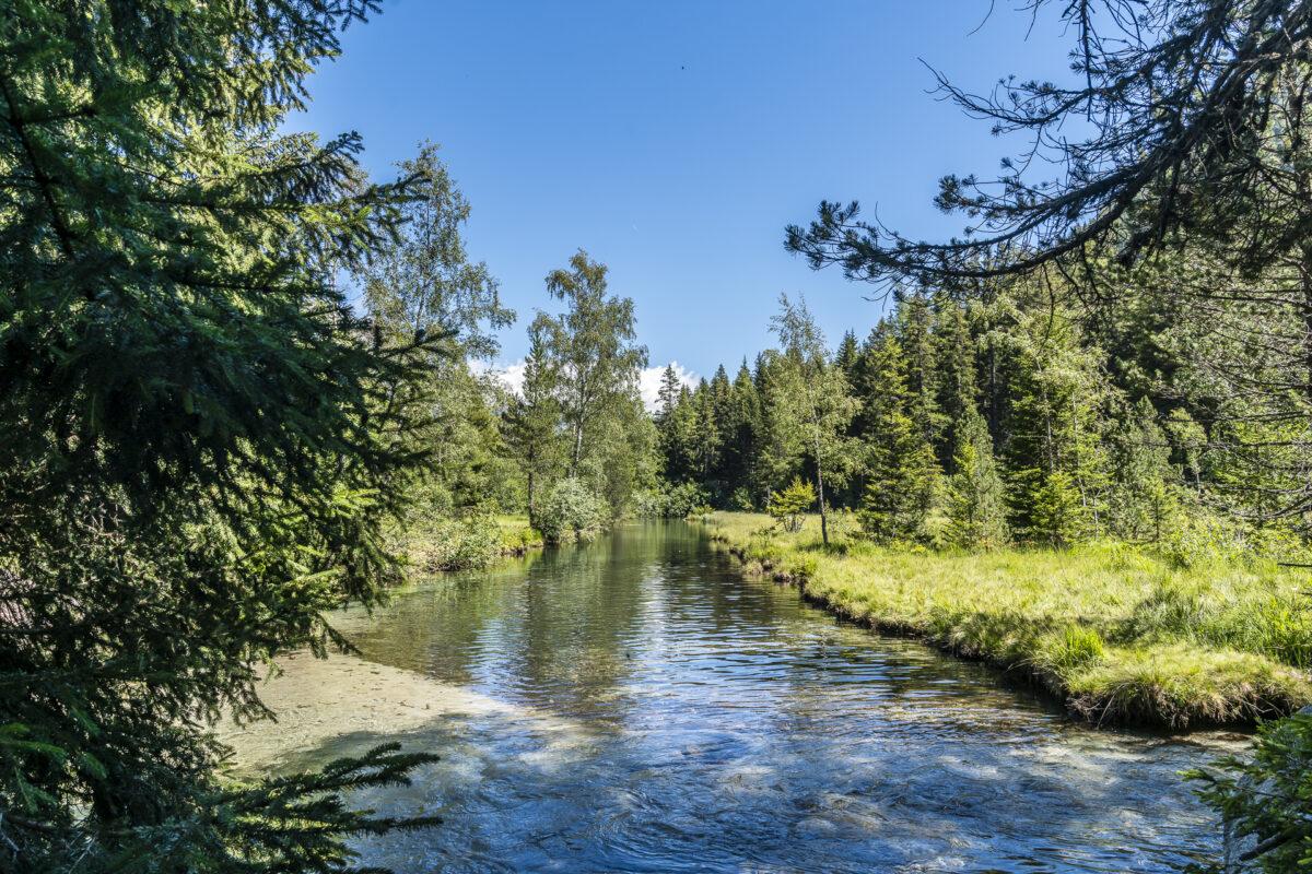 Champex-Lac Wallis