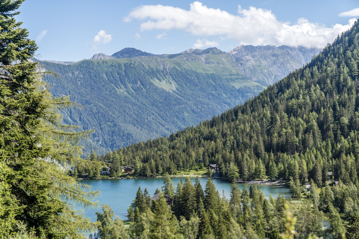 Panorama Champex-Lac